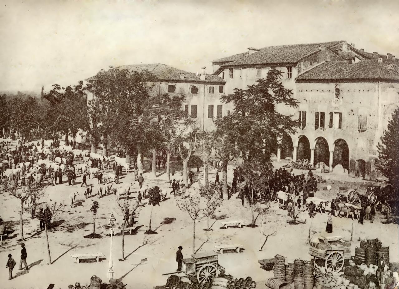 FileMercato Del Bestiame In Piazza Del Castello A Mirandola 1902