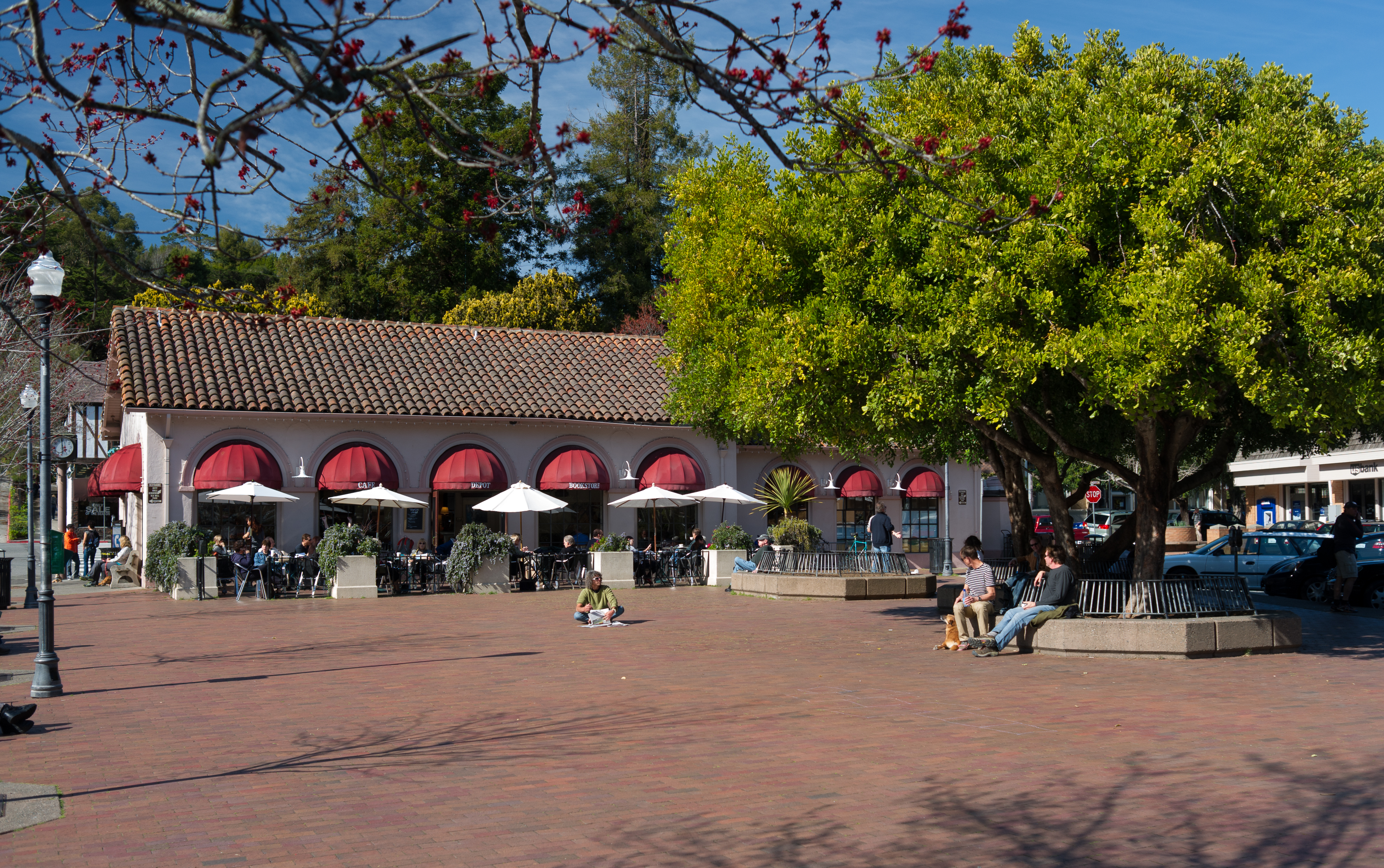 mill Valley free google image