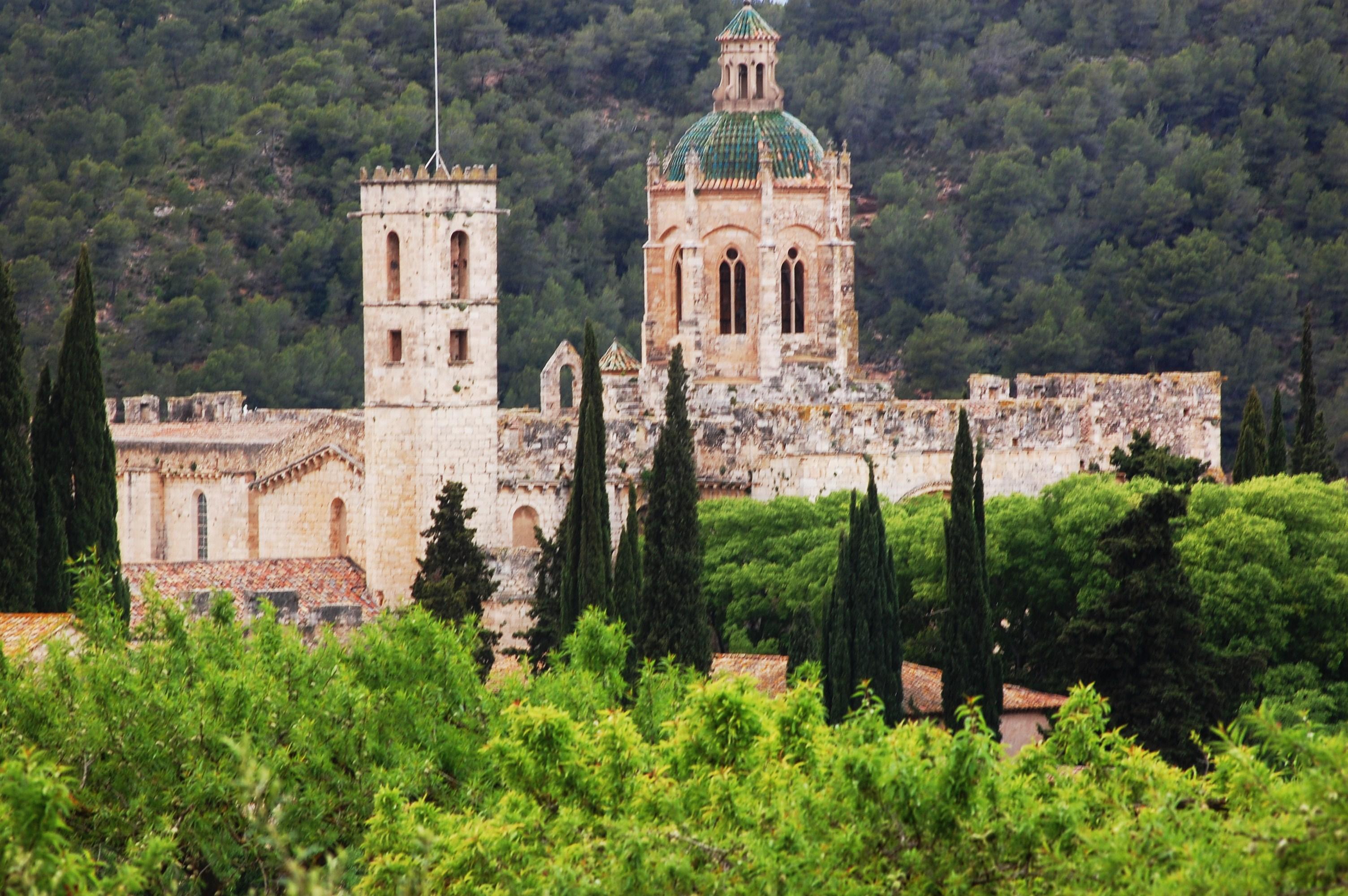 File:Monestir de Santes Creus (Aiguamúrcia) - 36.jpg - Wikimedia Commons