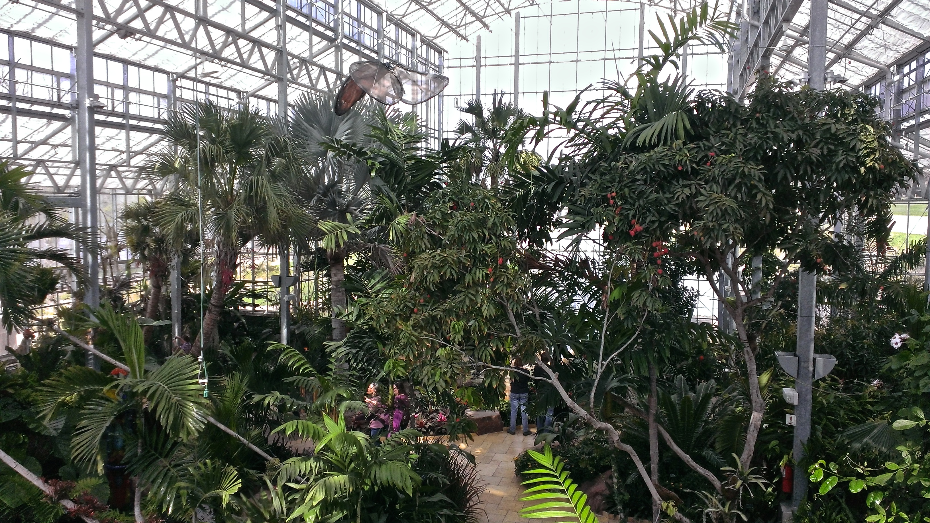 Image result for nicholas conservatory and gardens