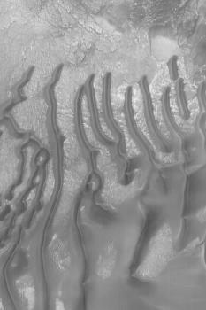 Sanddünen auf dem Boden eines Kraters im Gebiet Noachis Terra.