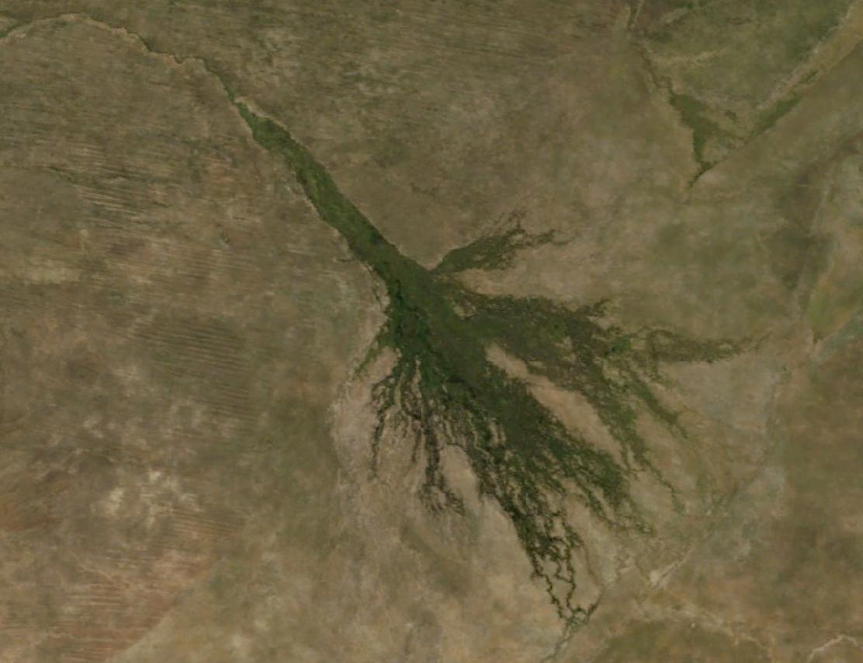 rivière de lokavango botswana