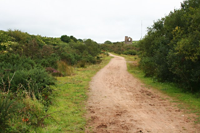 Path across Newton Moor - geograph.org.uk - 534688