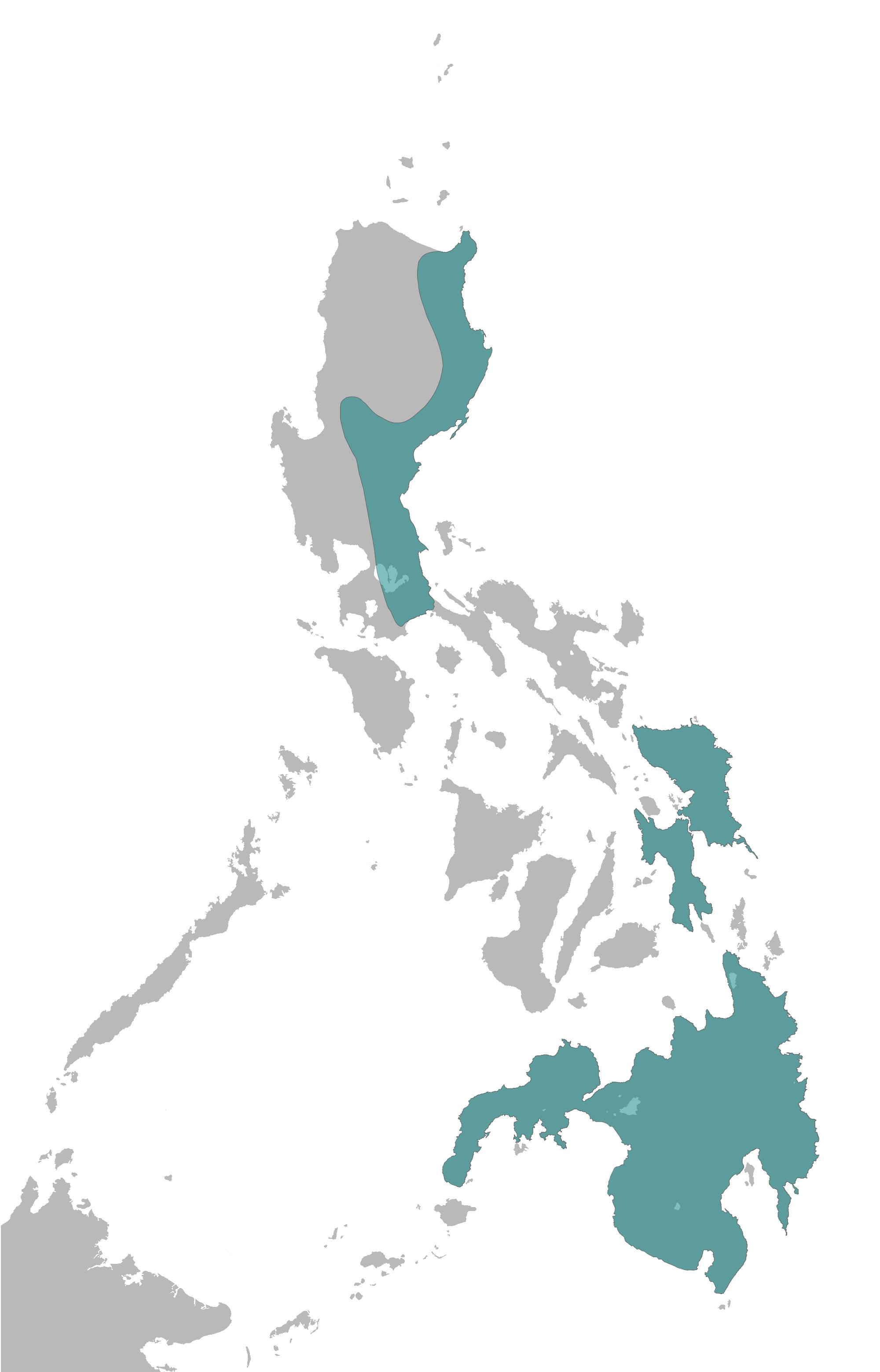 philippine eagle wikipedia