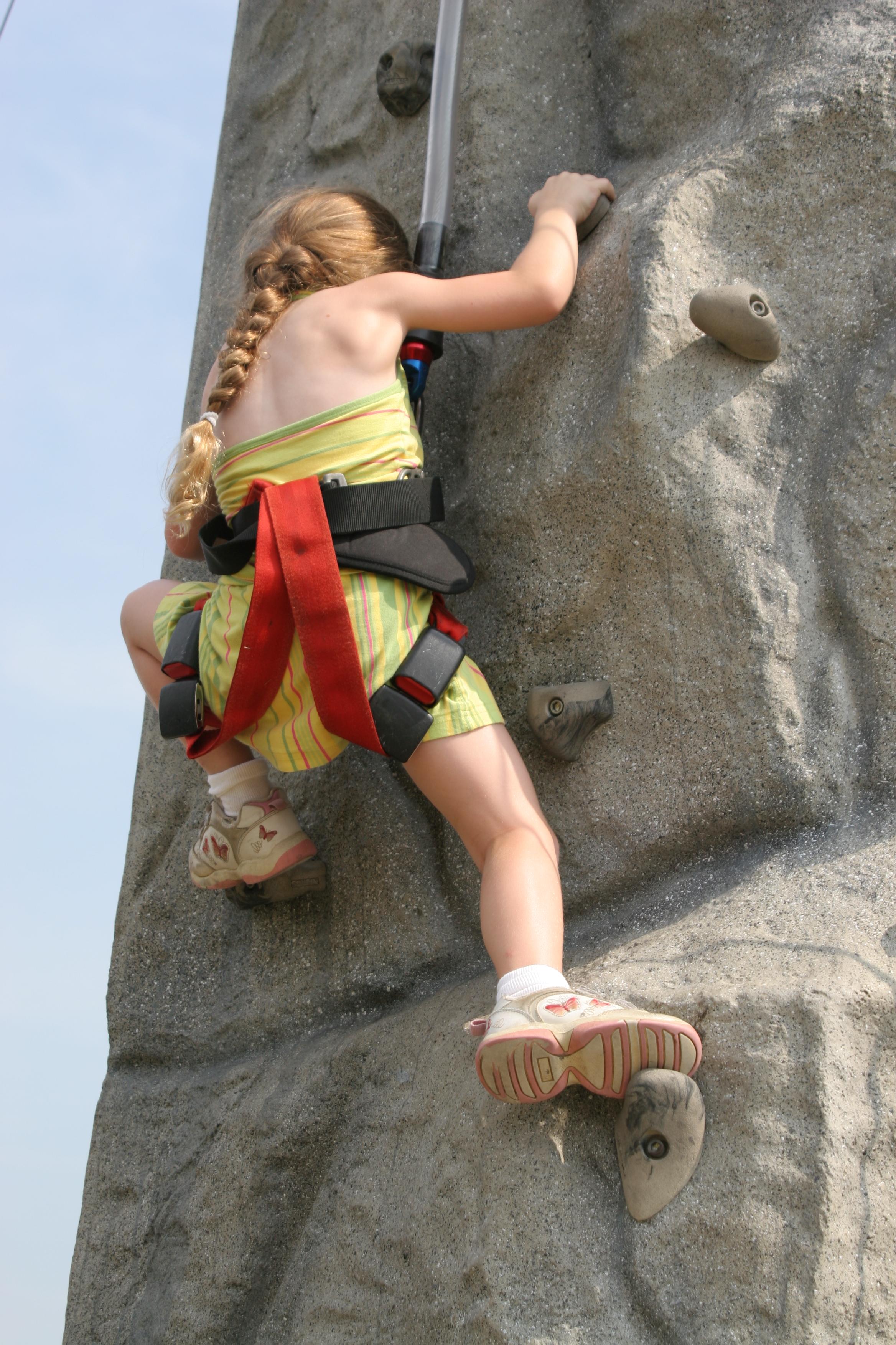 Climbing Hold Wikipedia