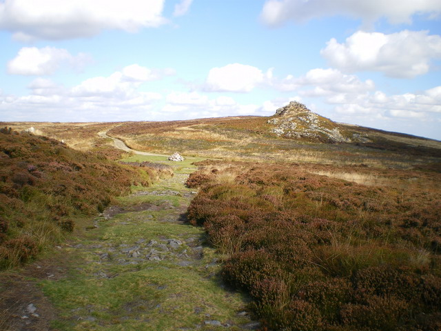 Shepherd's Rock from the Stiperstones bridleway - geograph.org.uk - 1498554
