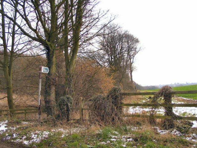 Storr's Dike Path - geograph.org.uk - 136400