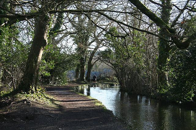 Tavistock, Tavistock Canal - geograph.org.uk - 715513