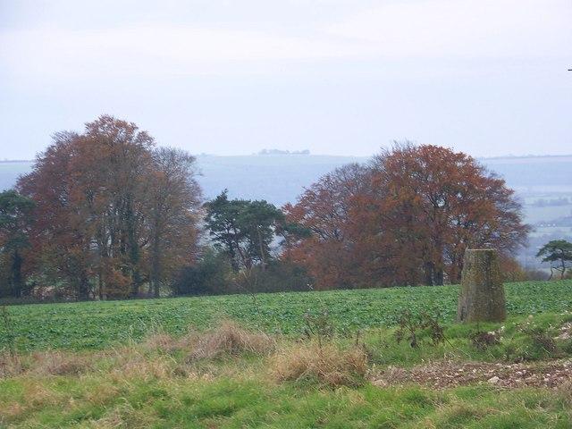 Triangulation Pillar on Grovely Hill - geograph.org.uk - 619533