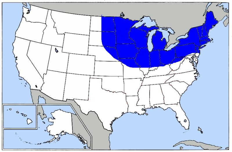Frostbelt VS Sunbelt VS Outlying Area Living State Better Map - Us sunbelt map