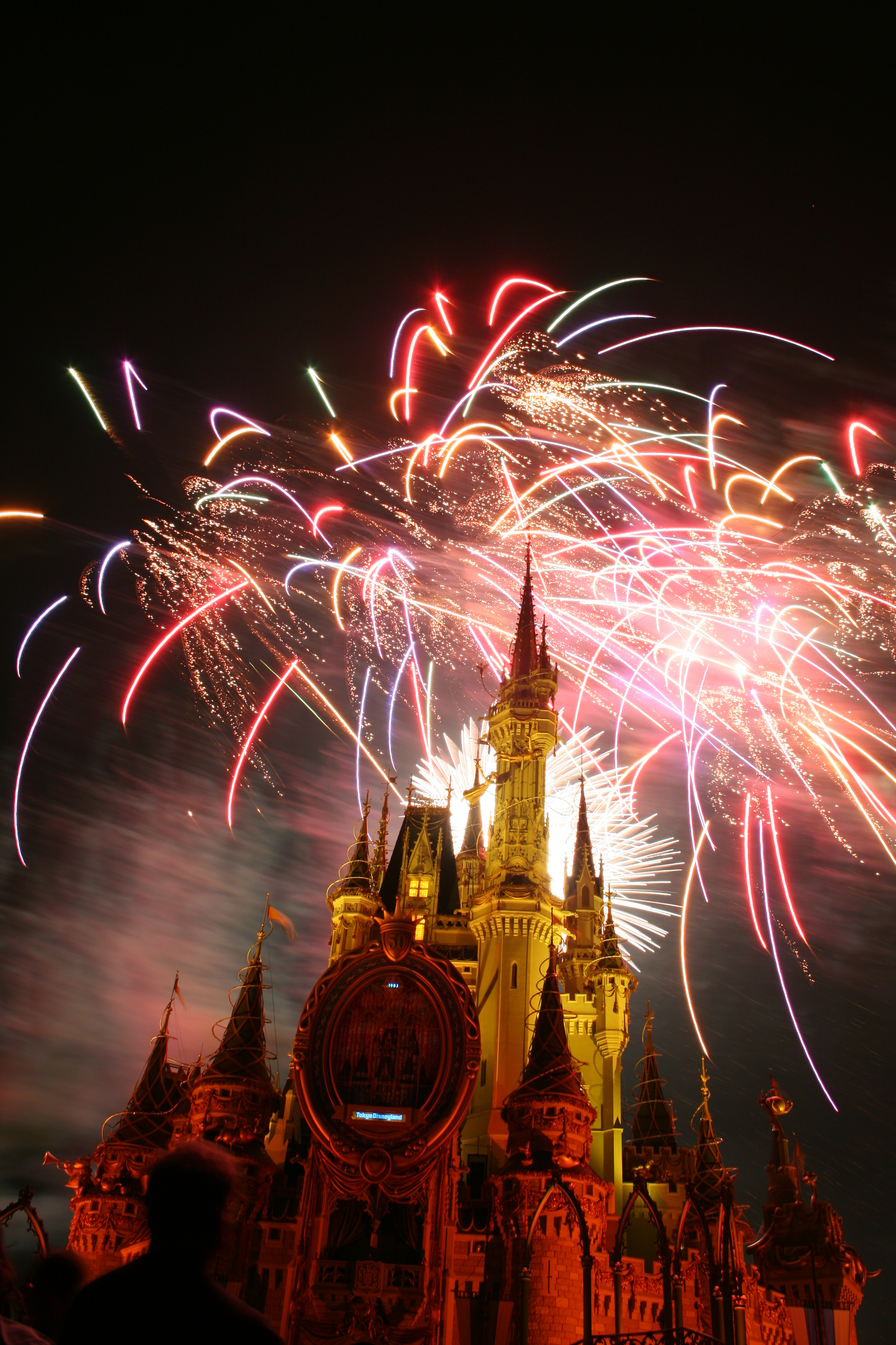 Disneyland Florida Resort Hotels