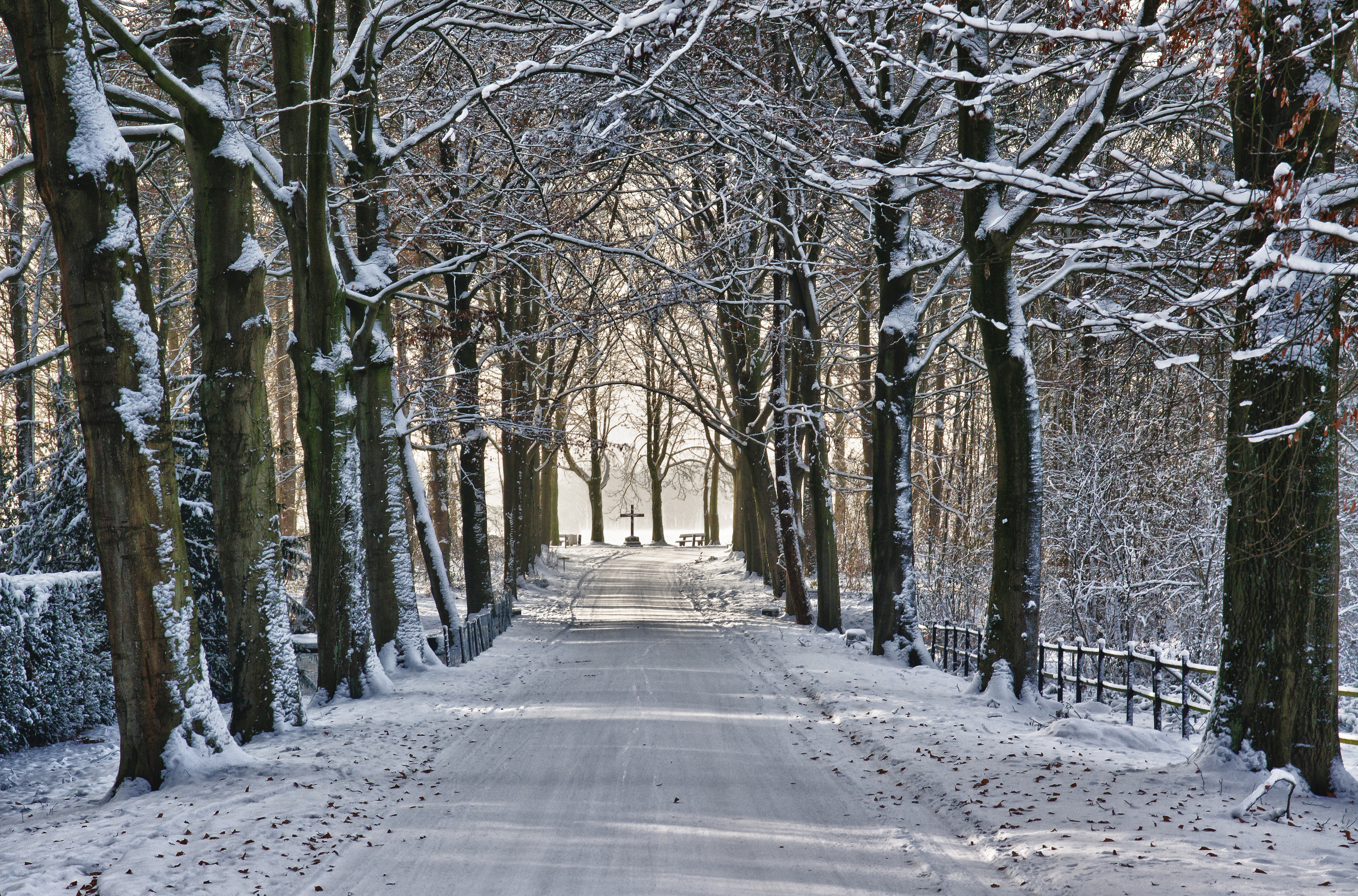 File:Winter Wonderland (about a year ago ...