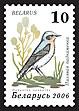 2006. Stamp of Belarus 0640.jpg