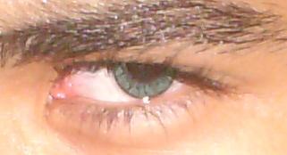 A blue eye.JPG