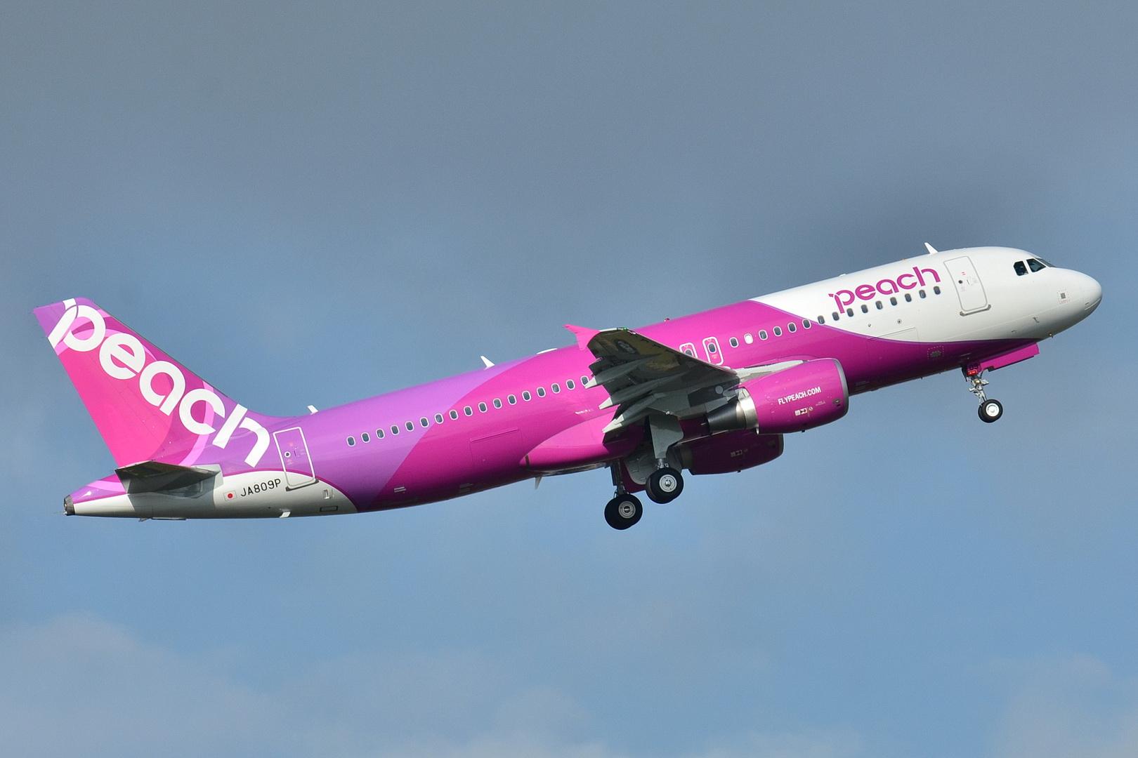 https://upload.wikimedia.org/wikipedia/commons/8/80/Airbus_A320-200_Peach_(APJ)_JA809P_-_MSN_5640_(9322789412).jpg