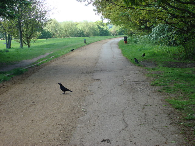 Alexandra Palace Park - geograph.org.uk - 1282530