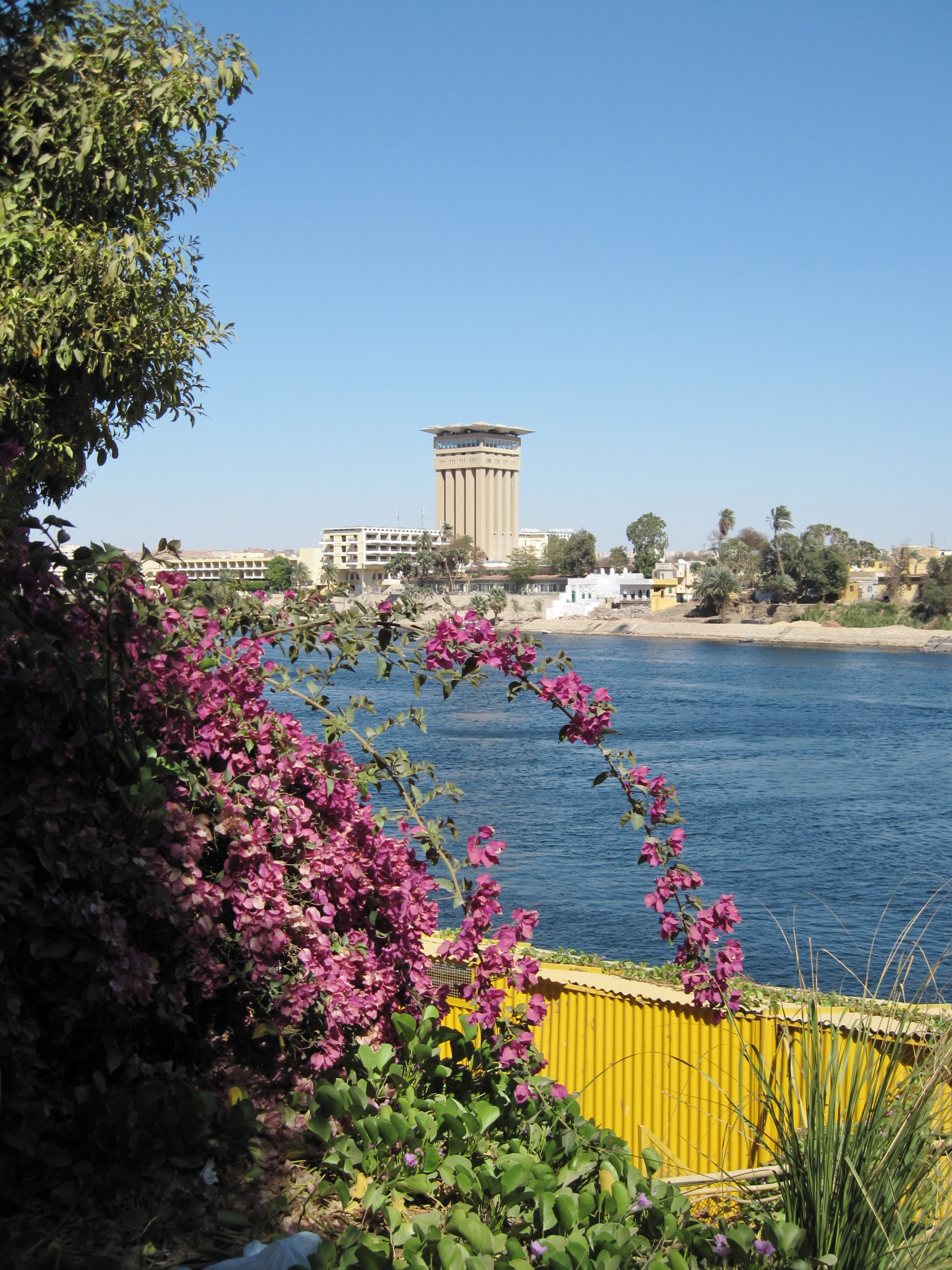 Photos of Kitchener\'s Island - Page 2 - Tourism in Egypt