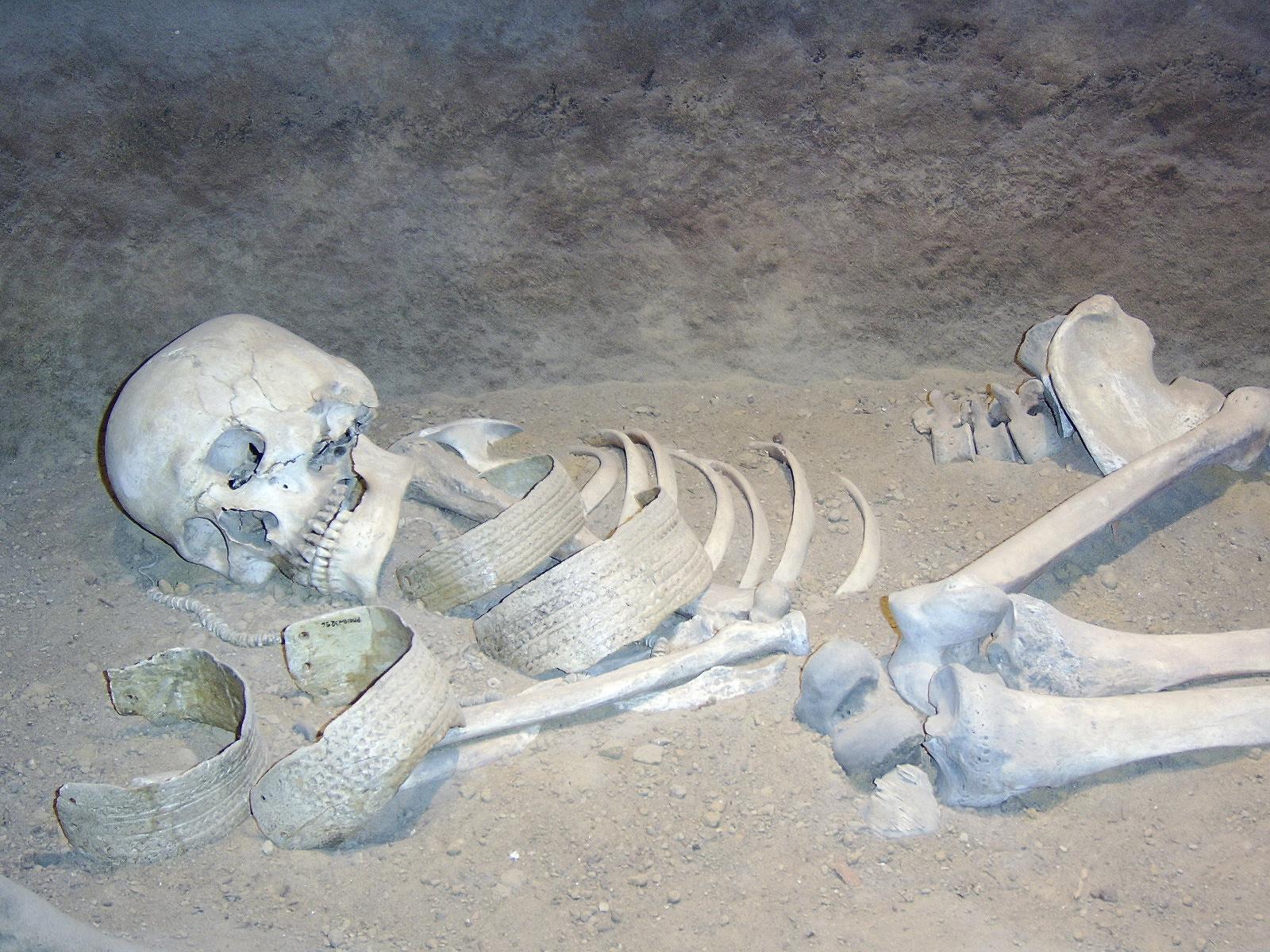 Relativi metodi di datazione antropologia