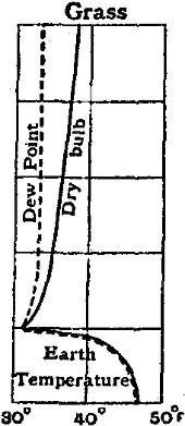 File:Britannica Dew 2.jpg