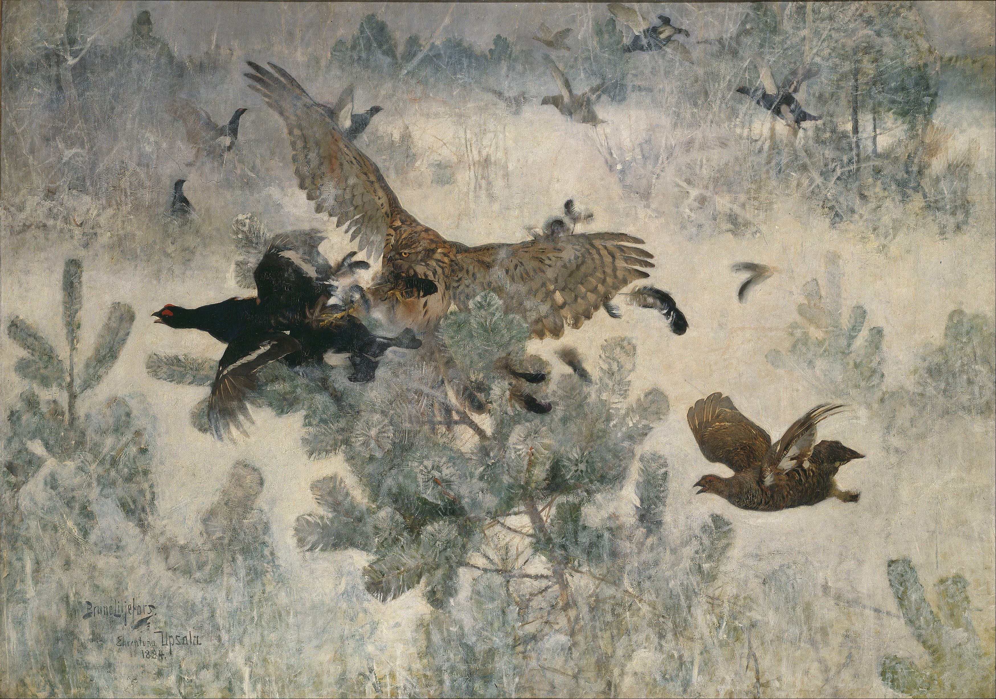 bruno liljefors - hawk and black-game - google art project.jpg
