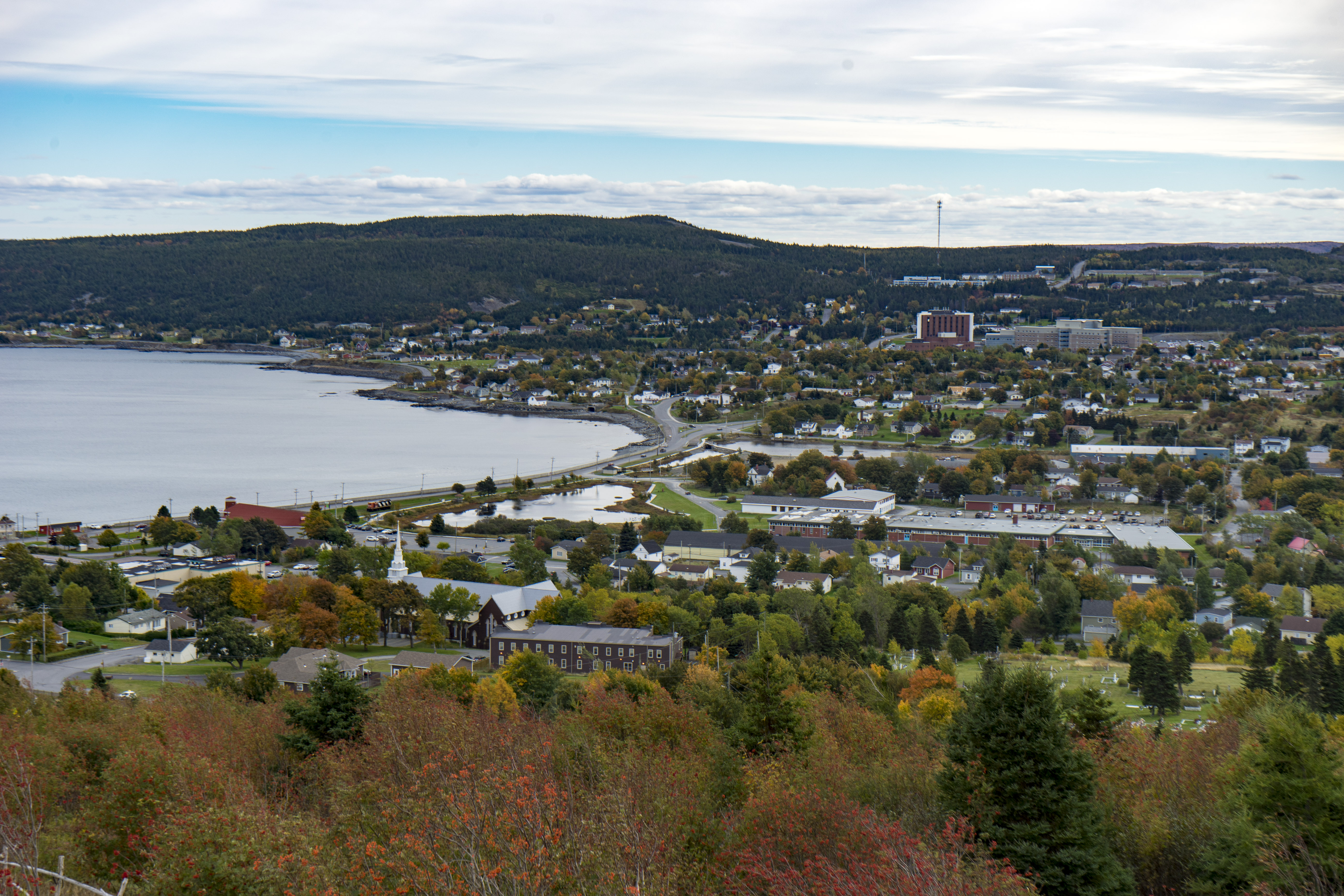 dating i Newfoundland Canada perfekt partner dating site