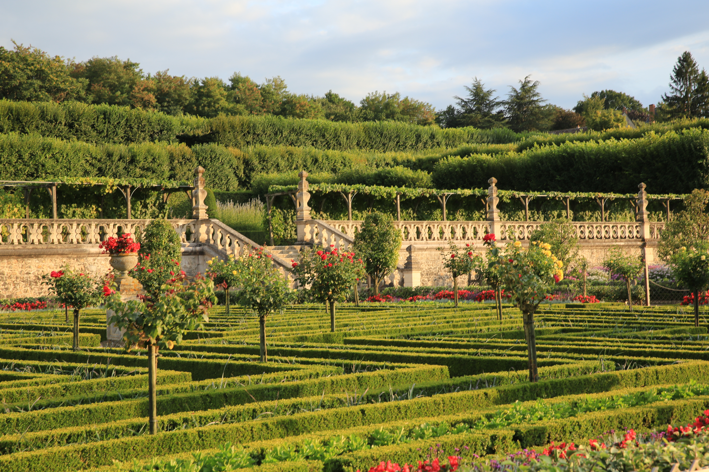 File Ch¢teau de Villandry Jardin potager et terrasses JPG