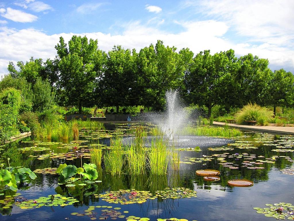Botanical Home Decor Denver Botanical Gardens Proflowers Blog