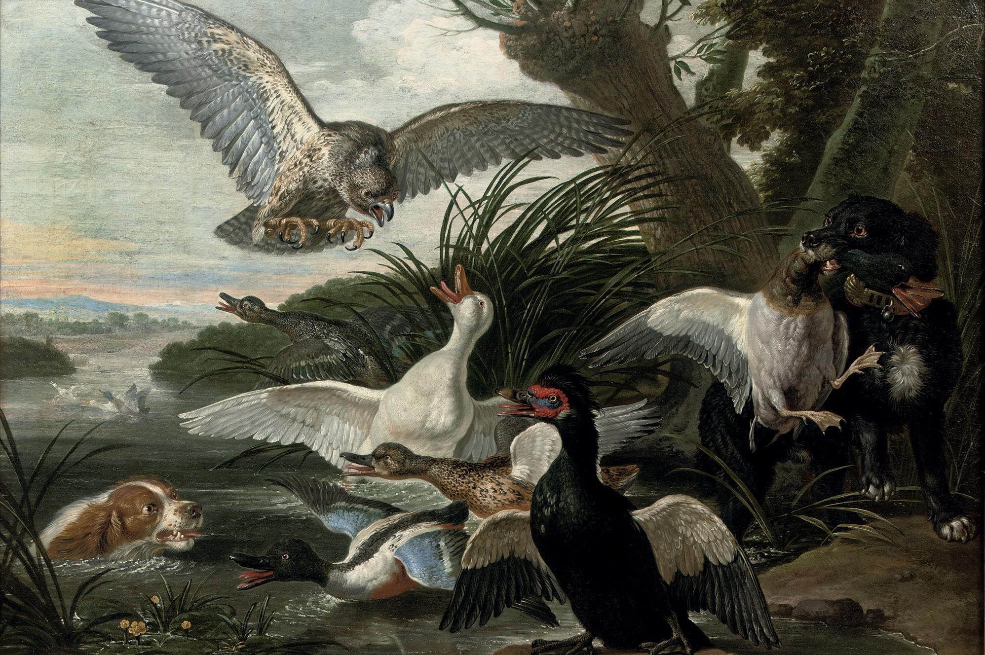 Фламандский живописец David de Coninck (1636-1699). Обсуждение на LiveInternet - Российский Сервис Онлайн-Дневников