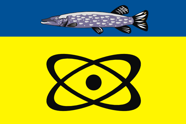 File:Flag of Schukino (municipality in Moscow).png