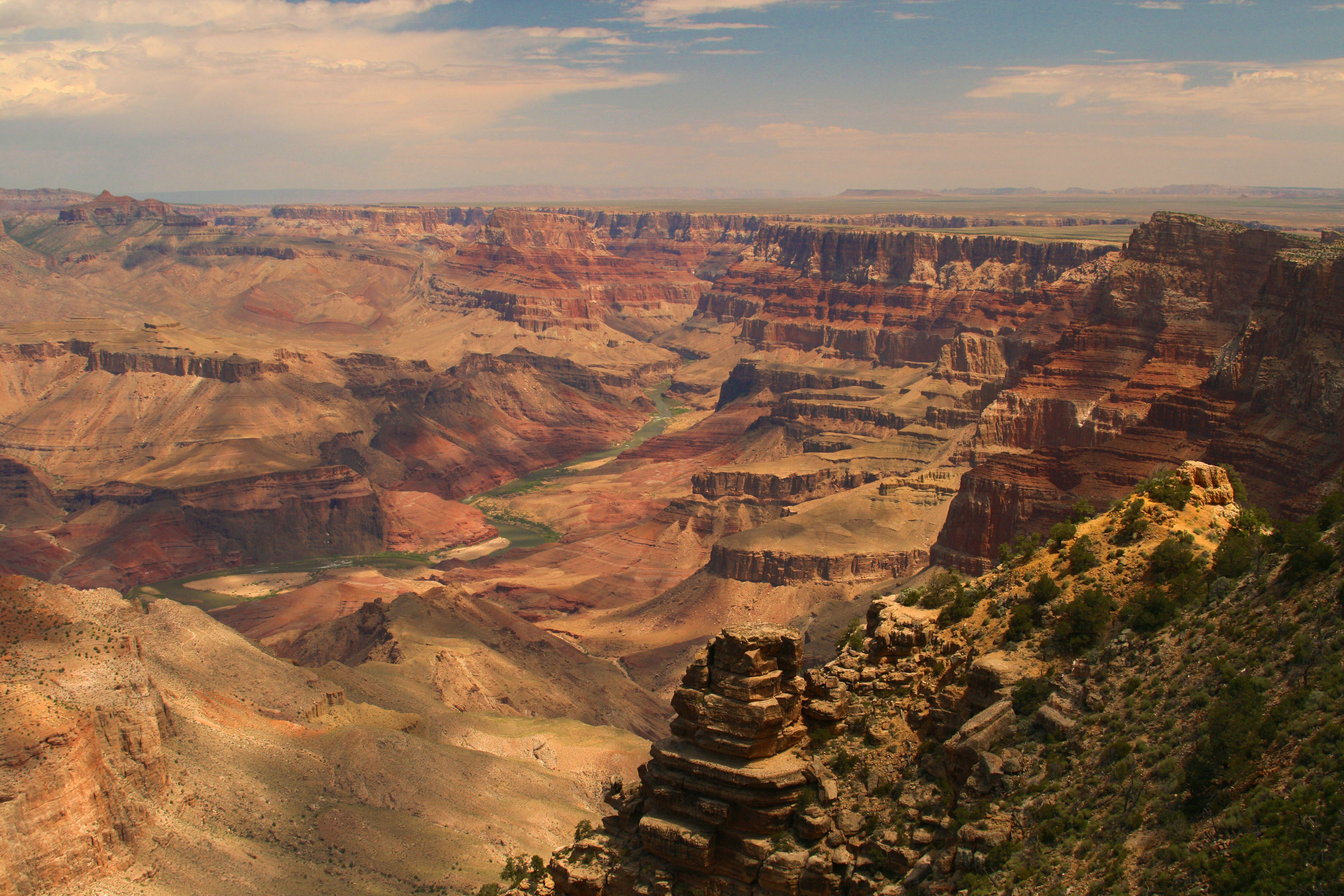 assignment 1a grand canyon Grand canyon psy 845 statistical test assignment 2015  in an essay of 250-500 words, use the scenario presented in part 1a,.