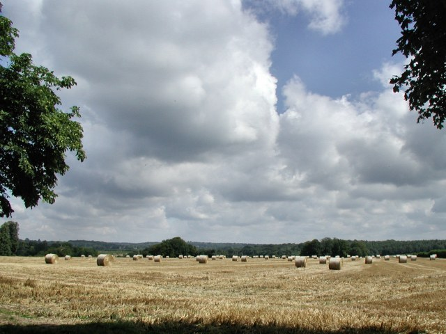 Harvest over. - geograph.org.uk - 34867