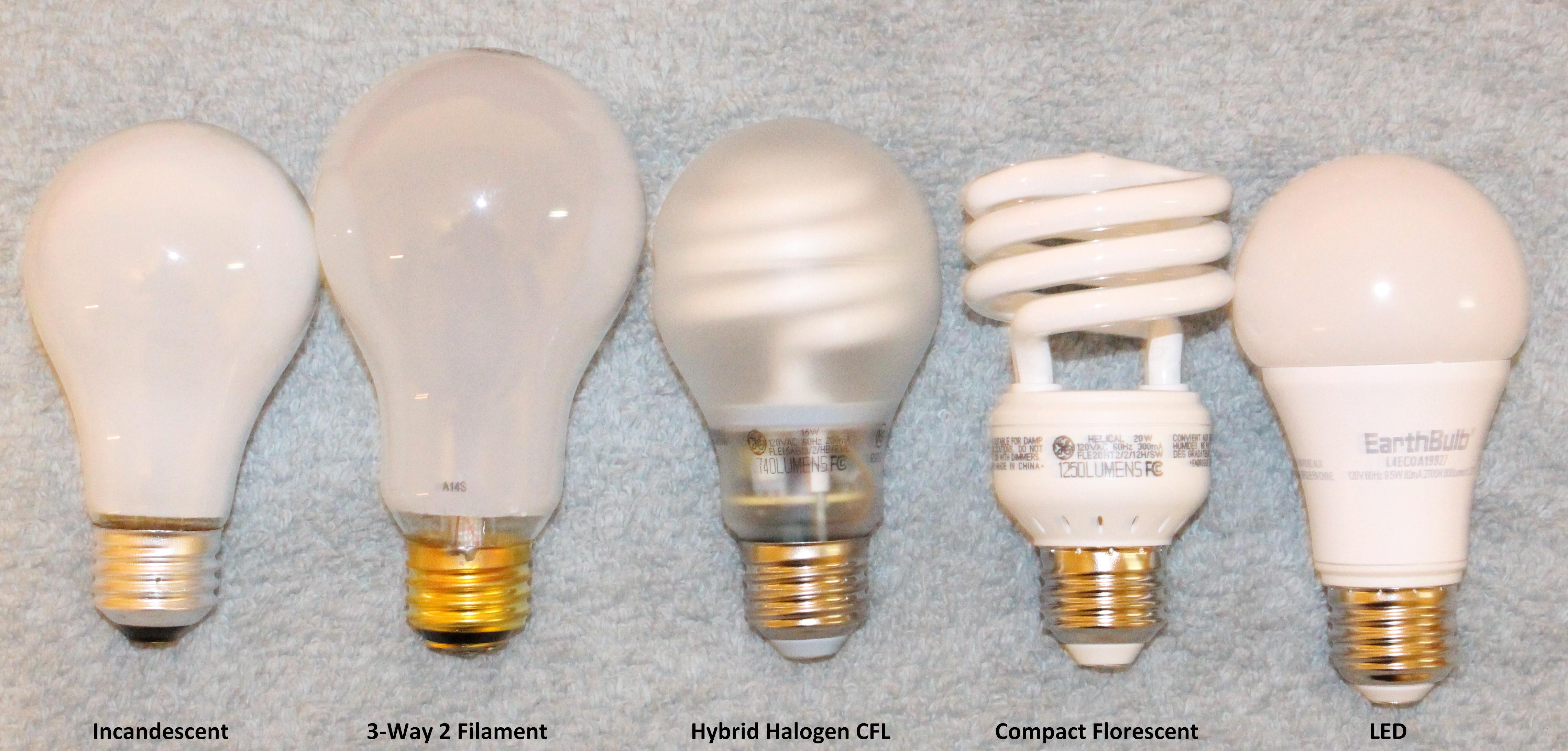 File Lightbulbs Jpg Wikimedia Commons