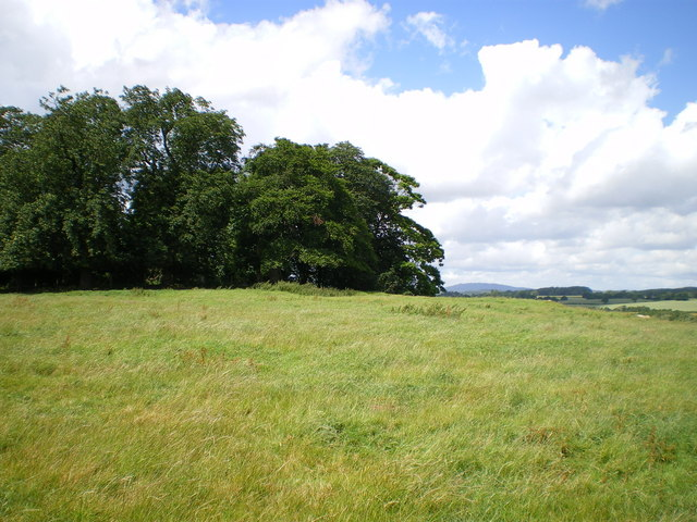 Lodge Hill to The Wrekin - geograph.org.uk - 871616