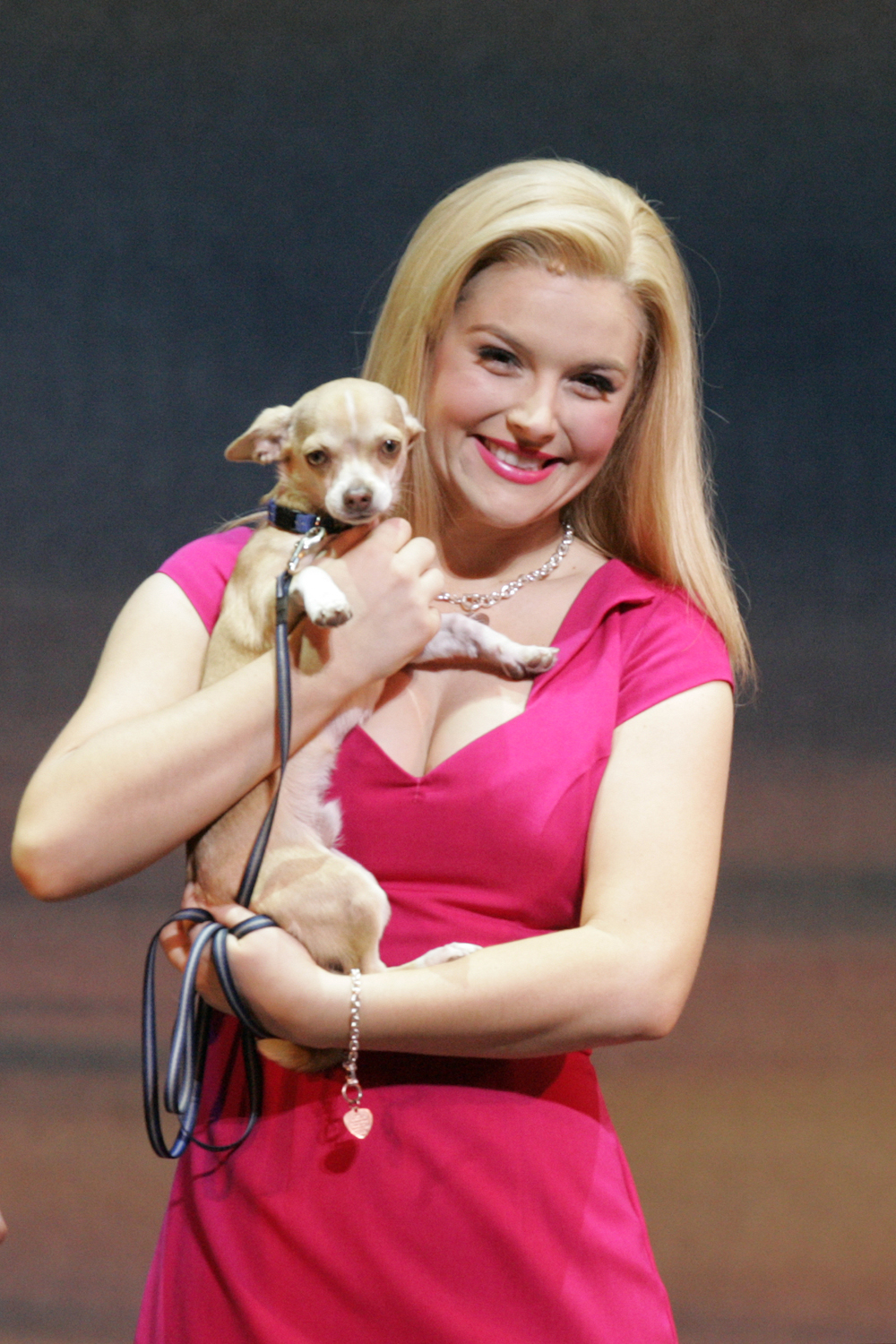 Legally Blonde the musical Wiki FANDOM powered by