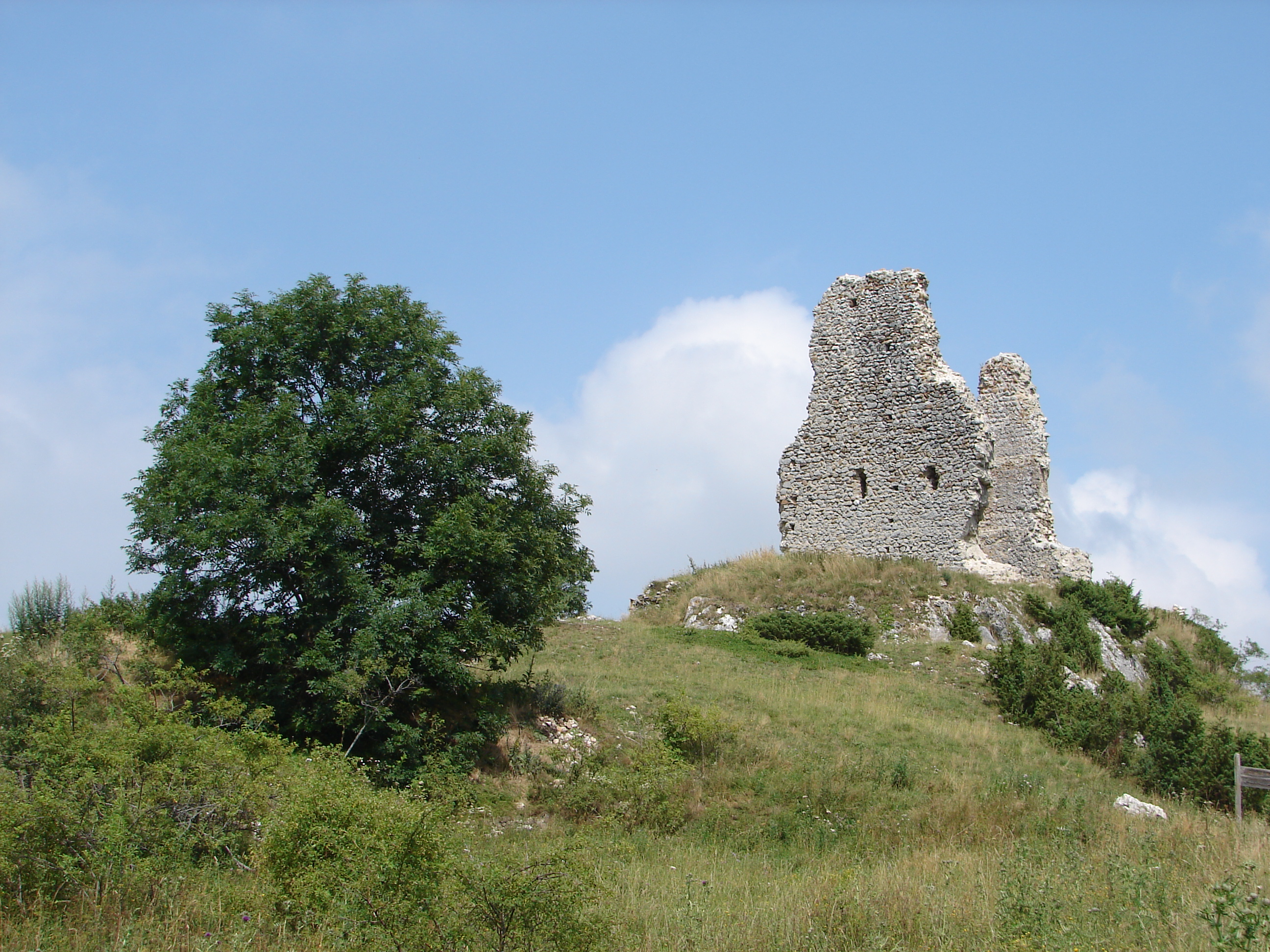 Montaillou castle.jpg