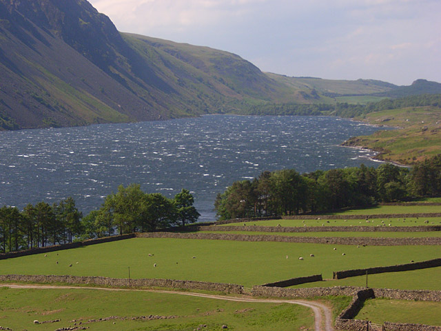 Pastures beside Wast Water - geograph.org.uk - 828941