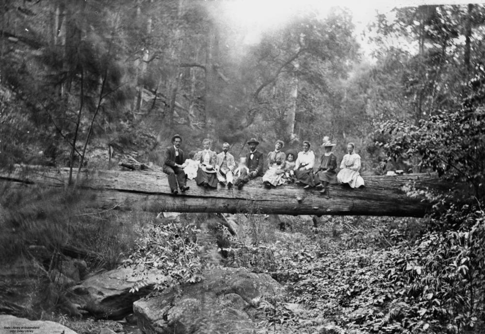 filestatelibqld 1 167059 people sitting on a large log