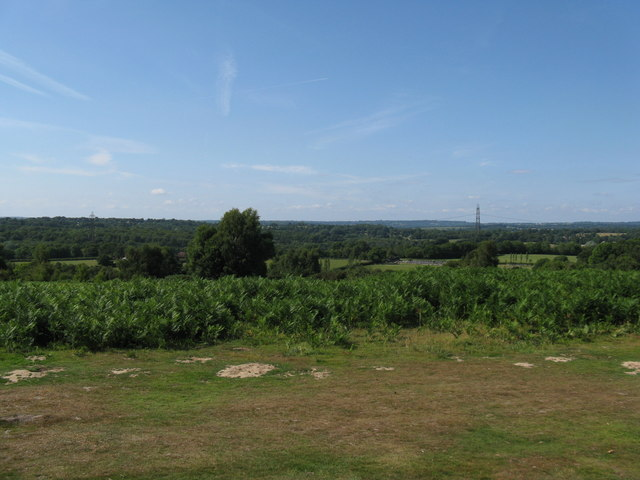 View north from Red House Common - geograph.org.uk - 1392389