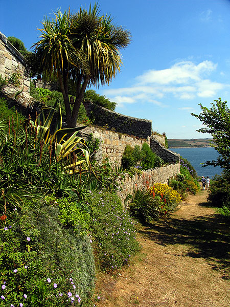 Walled Garden, St Michael's Mount (NT) - geograph.org.uk - 218924