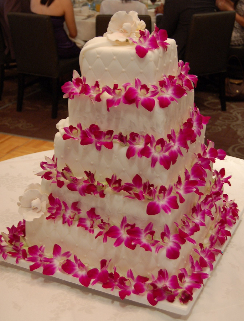 Wedding Cake Orchid Ef Bf Bd