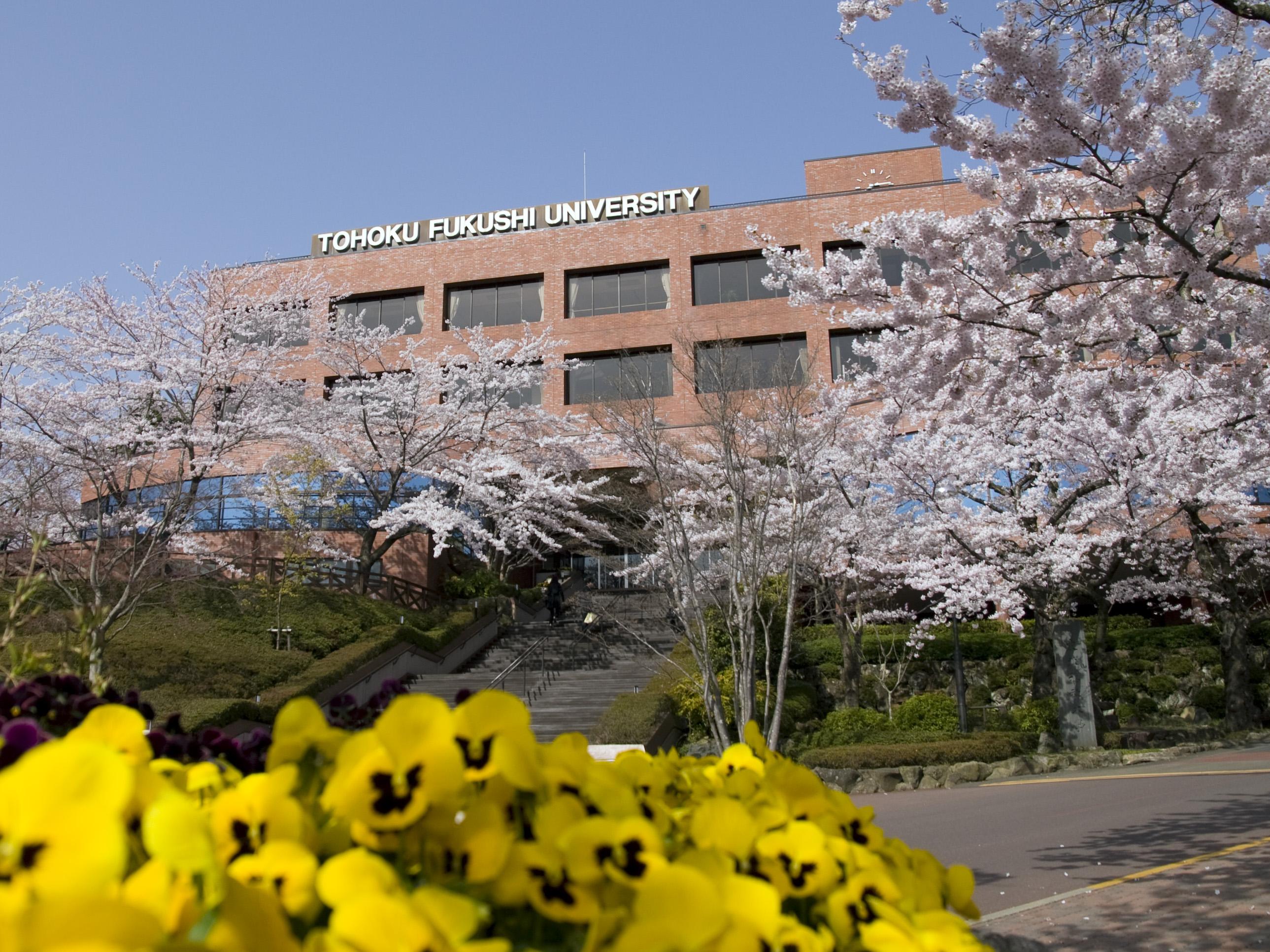 東北 福祉 大学 東北 福祉 大学