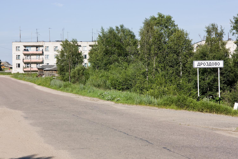 Фото дроздово городецкий район