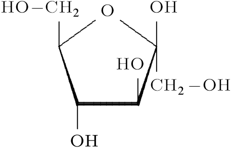 D Fructose Structure קובץ:Beta-D-Fructo...