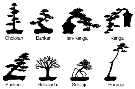 File Bonsai Style Jpg Wikimedia Commons