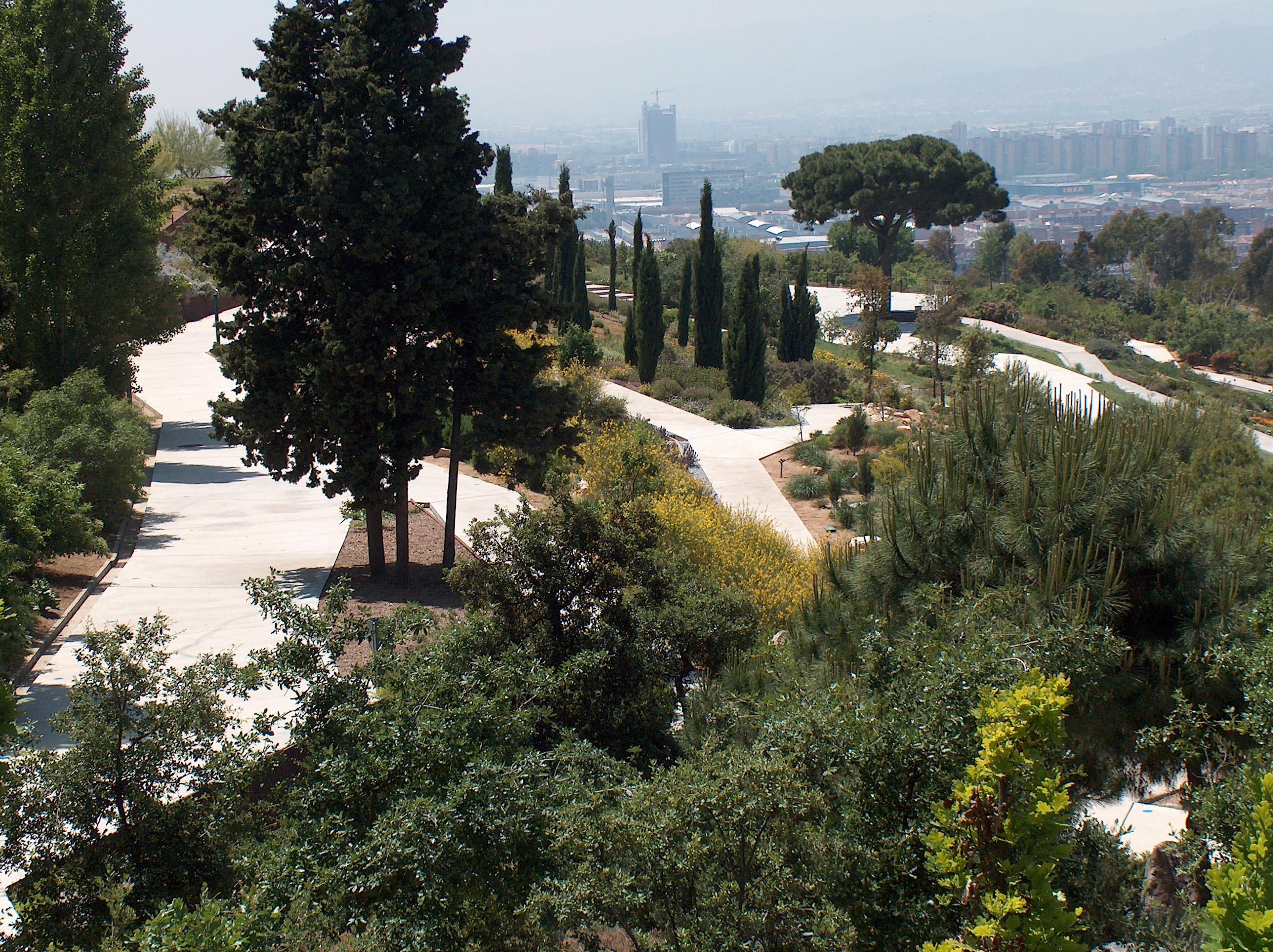 File botanical garden wikimedia commons for Jardin botanico montjuic