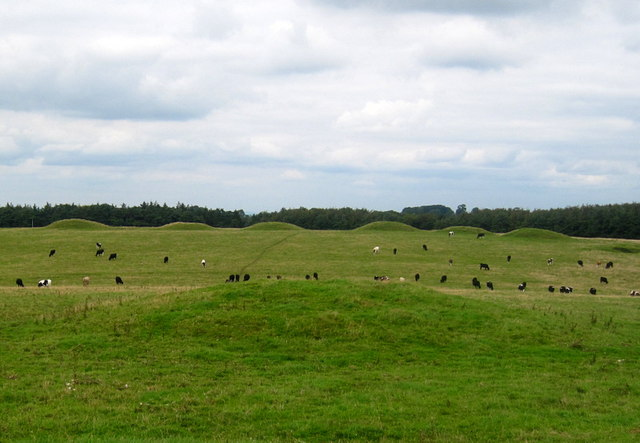 Bronze Age Barrows - geograph.org.uk - 1448193