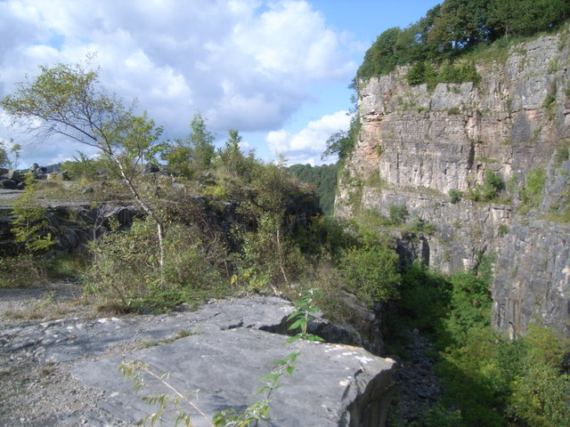 Cliffs and plateau on the banks of the River Wye - geograph.org.uk - 1163334