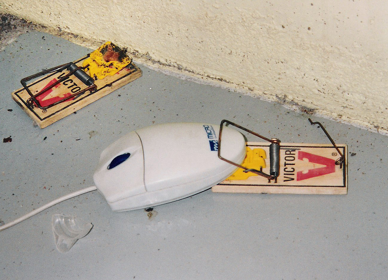 mouse trap Xcluder, the world's leading brand of rodent and pest exclusion product and the choice of professionals around the world.