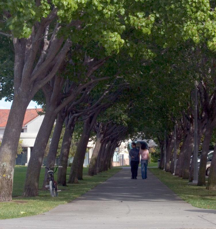 Datei:Cupertino-memorial park.jpg