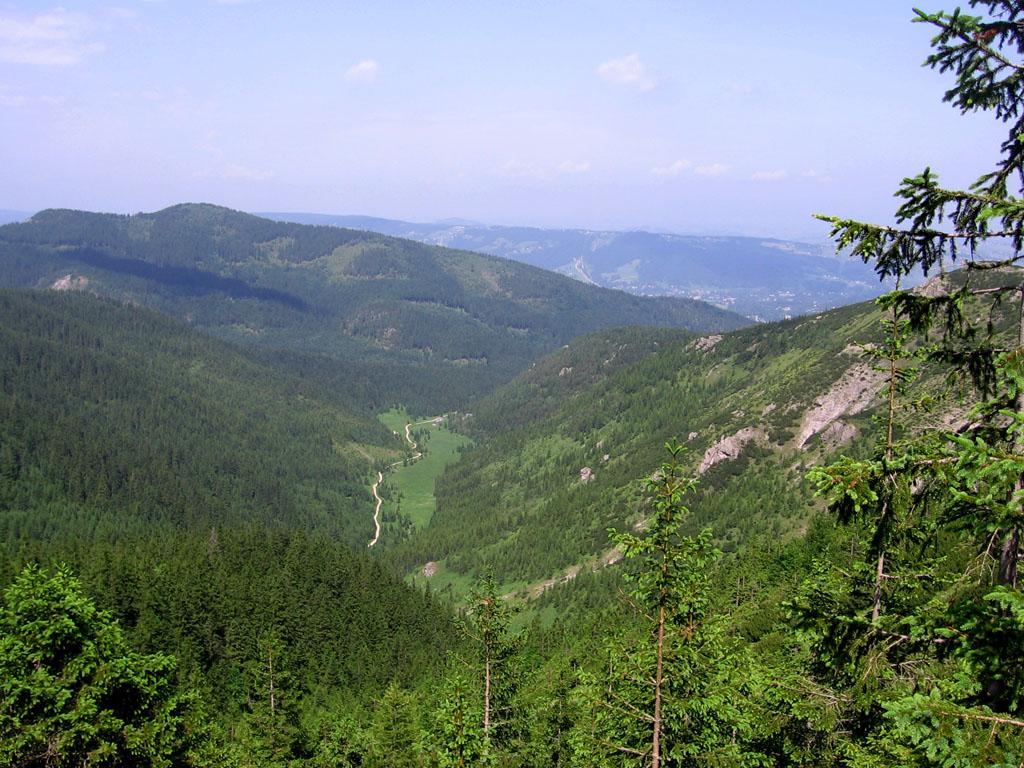 Dolina Jaworzynka (źródło: Wikimedia)